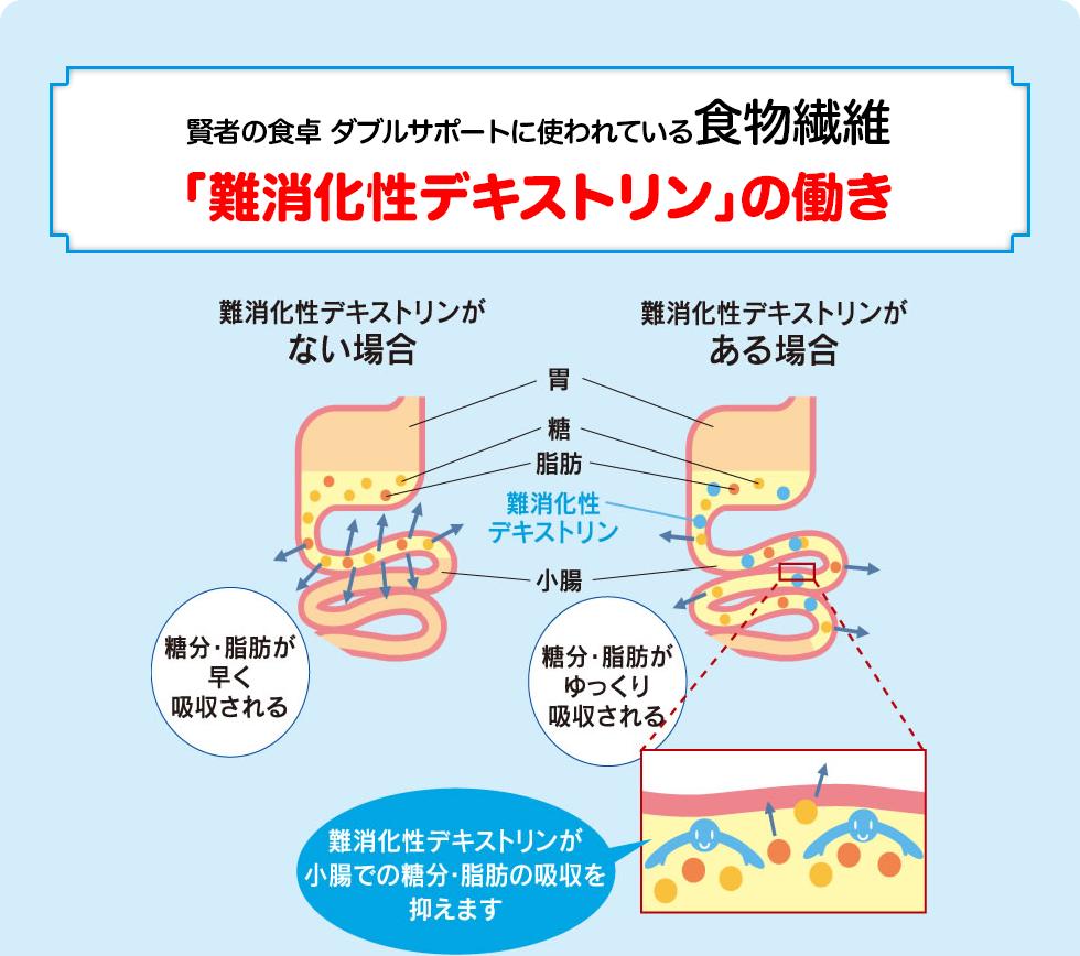 賢者の食卓 ダブルサポートに使われている食物繊維「難消化性デキストリン」の働き