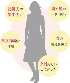 食事 エストロゲン エストロゲン過剰症・9つの原因とその対処法